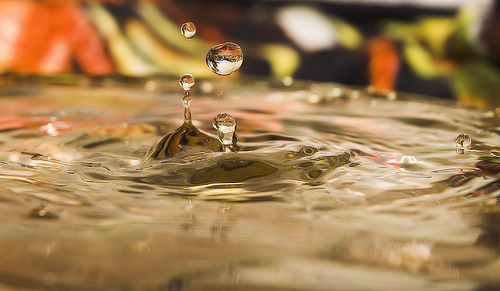 Tip for doing droplet photography