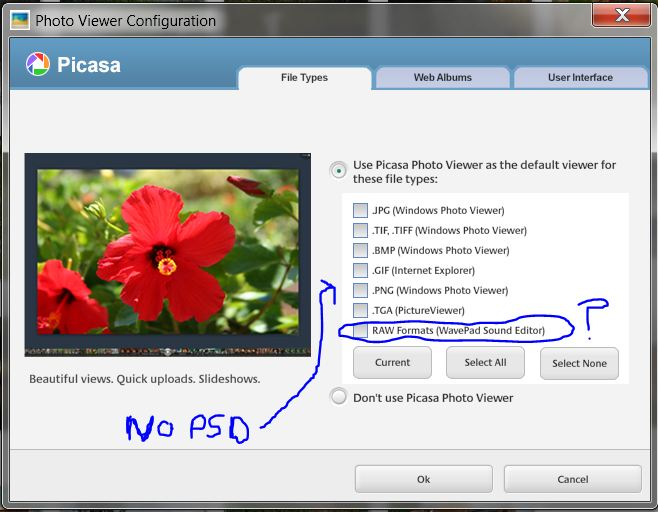 DNG,PSD...viewing enabled for Windows