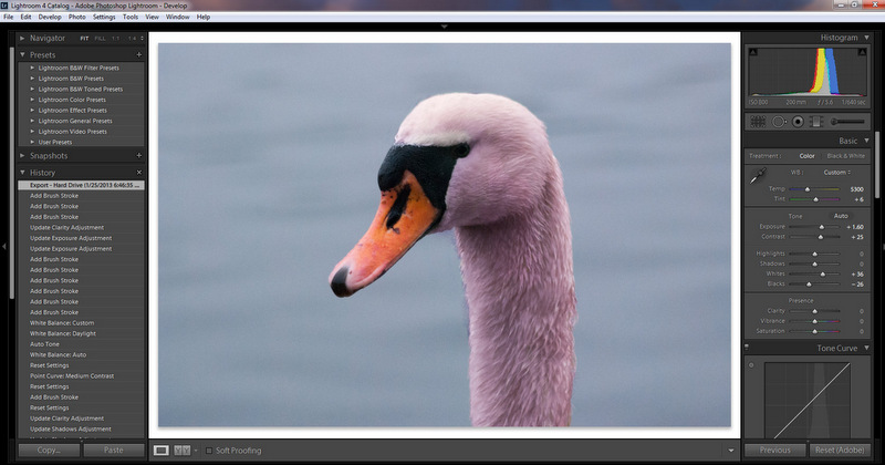 Learning to use the adjustment brush in Lightroom 4.1