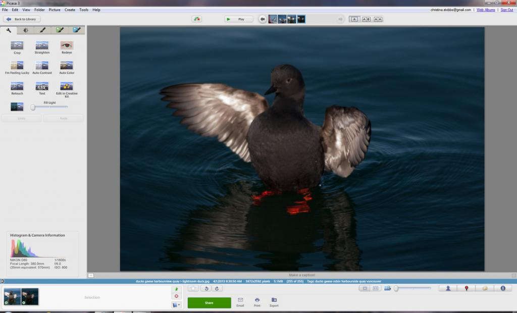 Editing in Lightroom 4.1 vs Adobe Elements 9 - Auto Tone