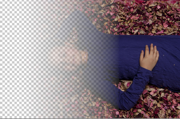 OBJECT or PHOTO transparency in Adobe Photoshop