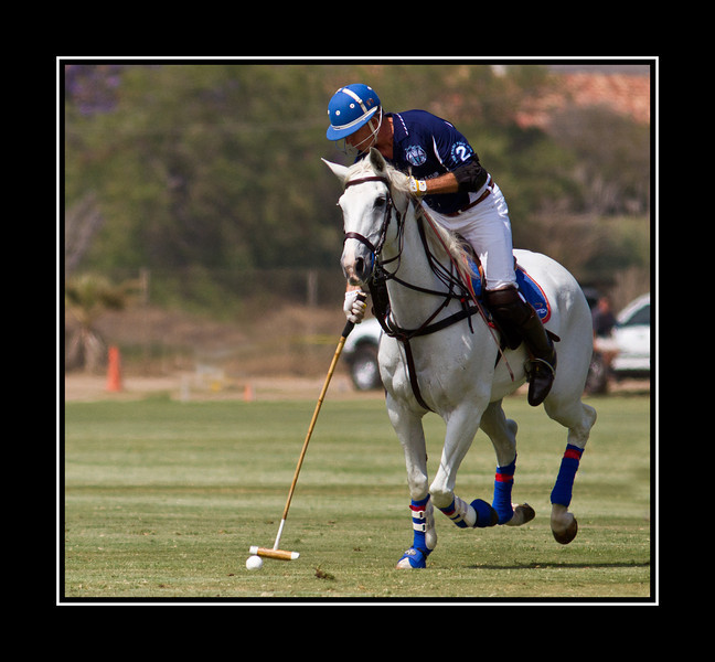Polo Match Shooting