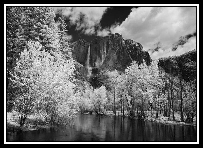 Infrared Images with Canon 20D Conversion