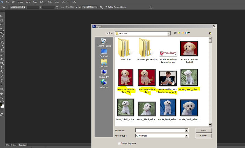 Opening Images in PSE-10 and Photoshop CS-6