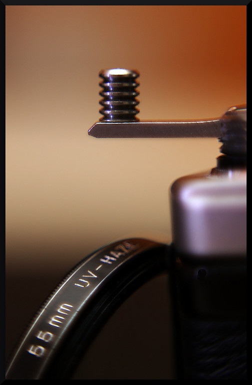 Reversing Ring and Macro photography