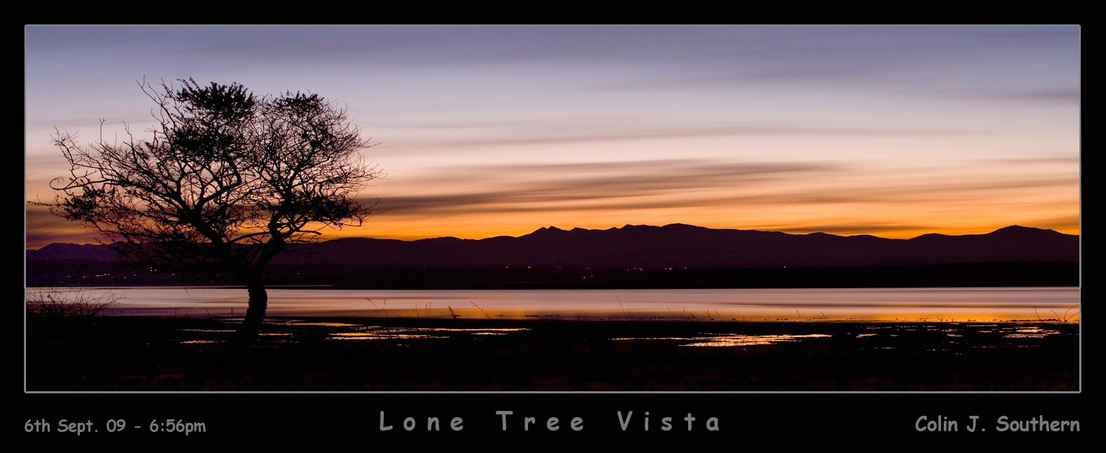 Lone Tree Vista