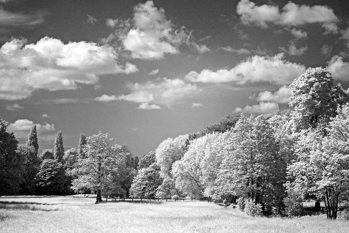 Infrared Images with Canon 40D